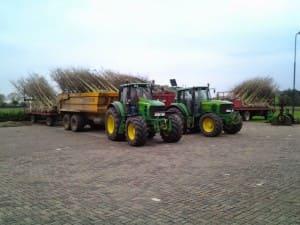 Bomen transporteren